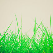 Retro look Grass meadow weed — Stock Photo
