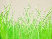 Retro look Meadow picture — Foto de Stock