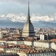 Turin view — Stock Photo #32515789