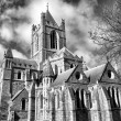 Christ Church Dublin — Stock Photo #32615725