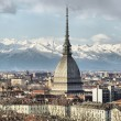 Turin view — Stock Photo #32616283