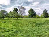Hyde park, Londra — Stok fotoğraf