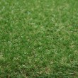 Stock Photo: Synthetic grass