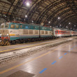 Stazione Centrale Milan — Stock Photo #37936293