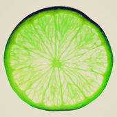 Retro look Lime slice — Stockfoto