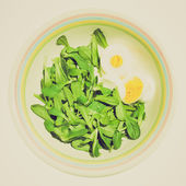 Retro look Salad picture — Foto de Stock