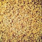 Retro look Sesame seeds — Stock Photo #47451811