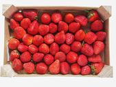 Strawberries fruits — Stock Photo