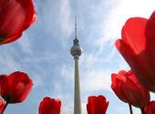 Tv-toren, berlijn — Stockfoto