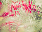 Retro look Christmas tinsel — Fotografia Stock