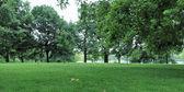 кенсингтонские сады лондона — Стоковое фото