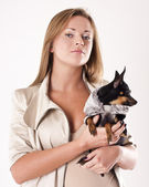 Female with a small dog. studio — Stockfoto