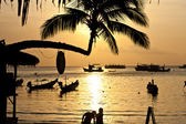 Sunset with palm and boats on tropical beach. Ko Tao island, — Stock Photo