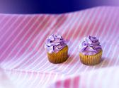 Holiday cupcakes — Stock Photo