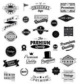 Set of Vintage styled design icons and banners. Vector graphic — Stock Vector