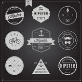 Set of Vintage styled design Hipster icons — Stock Vector