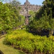 Stock Photo: Borobudur temple park, Yogyakarta, Javisland, Indonesia