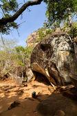 Ruins of Sigiriya Lion's rock fortress and palace — Stock fotografie