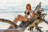 Woman in bikini posing on branchy log in water — Stock Photo