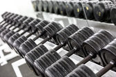 Stand with dumbbells — Stock Photo