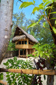 Tropical beach bungalow on ocean shore — Stock Photo