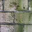 Old green and gray violet brick wall background — Stock Photo