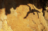 Shadow of a female rock climber on a cliff — Stockfoto