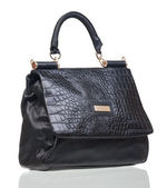 Black female bag isolated over white — 图库照片