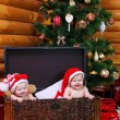 Cute baby girl and baby boy in xmas hats inside large chest — Stock Photo