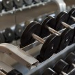 View of rows of dumbbells on a rack in a gym — Stock Photo