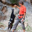 Stockfoto: Rock climber feeding goat at cliff