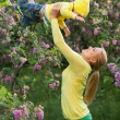Happy young woman lifting her son high up against blossoming tree in park — Stock Photo