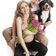Young pregnant couple and Entlebucher Sennenhund dog over white — Stock Photo