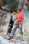 Rock climber feeding a goat at a cliff — Stock Photo