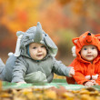 Stock Photo: Two baby boys dressed in animal costumes