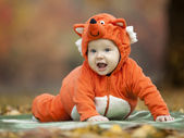 Baby boy dressed in fox costume — Stock Photo