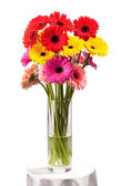 Gerbera flowers in vase isolated over white — Stock Photo