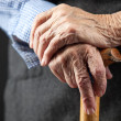 Closeup of senior woman's hands — Foto Stock