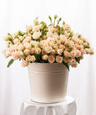 Bunch of creamy roses in a bucket — Stock Photo