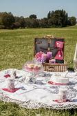 Piknik — Zdjęcie stockowe