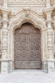Door of Cathedral — 图库照片