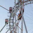 Ferris Wheel and Roller Coaster — Stock Photo #41896095