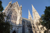 Votive Church in Vienna — Stock Photo