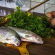 Two raw trouts — Stock Photo