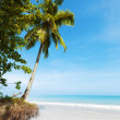 Dream beach - Stockfoto