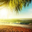 Sunset over the tropical beach — Stock Photo