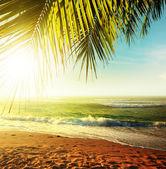 Západ slunce nad tropickou pláž — Stock fotografie