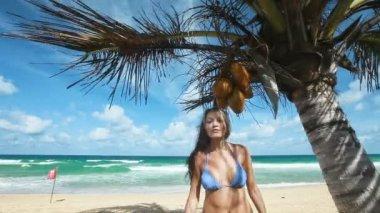 Spiaggia tropicale — Video Stock
