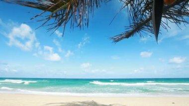 Tropikalna plaża — Wideo stockowe