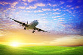 Jet aircraft over the field of green at sunset — Stock Photo